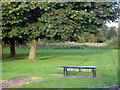 SJ8952 : Tank Field, Norton Green by Neil Lewin