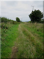 TM1683 : Northwards view to the end of Broad Way by Zorba the Geek