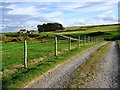 NZ0809 : Park House Farm by Graham Scarborough