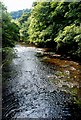 SK2474 : River Derwent at Calver by Roger Temple