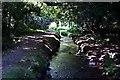 SX0854 : Valley Bottom Stream by Tony Atkin