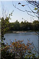 TL3976 : Fishing lake near Earith by Ben Harris
