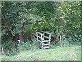 SJ4843 : Footbridge across the Shothill Brook by Philip Ingram