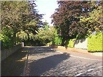 SE1421 : Somerset Avenue, off Woodhouse Lane, Rastrick by Humphrey Bolton
