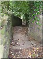 SE1324 : Steps on footpath, Sutcliffe Wood, Brighouse by Humphrey Bolton