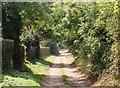 TL7298 : Lane to Cottage Fen by Lisa Wild