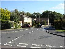 TL7835 : Park Vale Close, Castle Hedingham by Oxyman