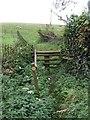 SP7520 : Matthew's Way, Quainton by Rob Farrow