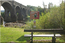 NY7063 : Alston Arches Viaduct by Stephen McKay