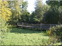 TQ5794 : Raised walkway - South Weald by John Winfield