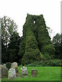 TG0229 : St George's ruin and cemetery - view NE by Evelyn Simak
