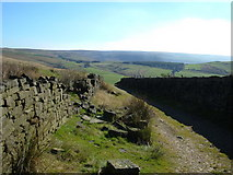 SD9810 : Pennine Bridleway, Low Gate Lane by michael ely