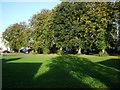 NY2332 : Bassenthwaite Village Green by Alexander P Kapp