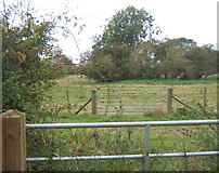 TM0663 : Gates and fields, Brown Street by Andrew Hill