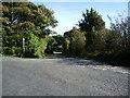 NY1733 : The road to Long Close Farm by Alexander P Kapp