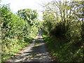SN1122 : Lane near Bron-y-Gaer, Llandissilio West by Humphrey Bolton