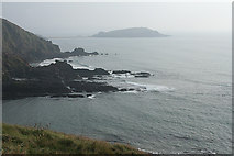 SX6345 : Ringmore: above Ayrmer Cove by Martin Bodman