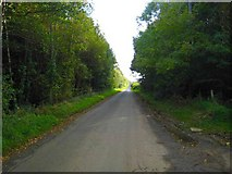 C7535 : The Springbank Road, Downhill by Rossographer