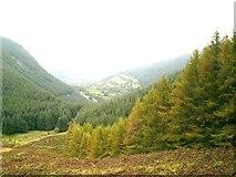 SJ0124 : Looking down into Cwm Llech by John