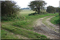 TF7621 : Bridleway meets Permitted Footpath by Robert Walden