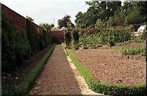 SU3370 : Victorian Kitchen Garden by Adrian Cable