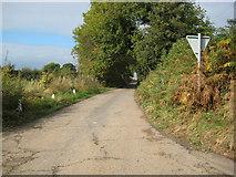 SJ5336 : Coppice Lane near Steel Heath by Peter Fleming