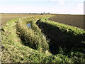 TA2031 : Curved Ditch by Andy Beecroft