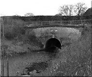 SU7151 : Eastern Portal, Greywell Tunnel, Basingstoke Canal by Dr Neil Clifton