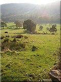 SE0927 : Footpath to Simm Carr Farm, Shibden Dale, Northowram by Humphrey Bolton