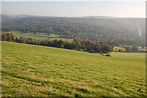 SK2376 : Fields below the B6521 by Roger Temple