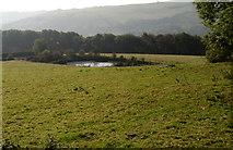 SK2375 : Small reservoir above Middleton Plantation by Roger Temple