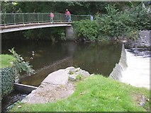 SN4562 : Lovers' Bridge, Aberaeron by Humphrey Bolton