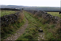 SK2076 : A farm track running south from Tideswell Lane by Roger Temple