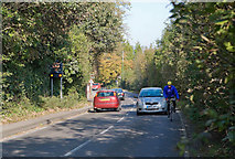 SU6017 : A32 road approaching Droxford from the south by Peter Facey
