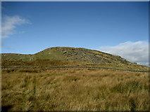 SD7659 : Part of Whelp Stone Crag by Chris Heaton
