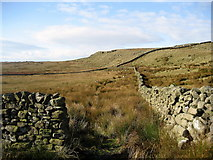 SD7659 : Whelp Stone Crag by Chris Heaton