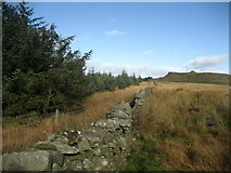 SD7558 : Eastern Edge of Gisburn Forest by Chris Heaton