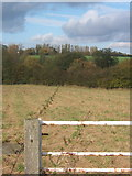 TM1057 : View across fields from track between Creeting St Mary and Earl Stonham by Andrew Hill