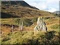 NN8232 : Standing stone, Glen Almond by Richard Webb