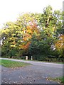 SP3074 : Trees on Kenilworth Road (A429) by E Gammie