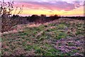 TL2297 : View towards Peterborough by Julian Dowse