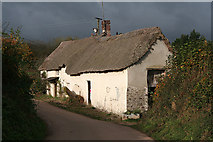 SS6613 : Wembworthy: cottage for auction by Martin Bodman