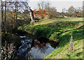 SO6585 : Brook near Newton Farm, Shropshire by Roger  Kidd