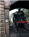SK0247 : Steam Engine under Froghall Bridge, Staffordshire by Roger  Kidd