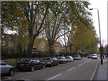TQ3581 : Plane Trees, Stepney Green, East London by Dr Neil Clifton