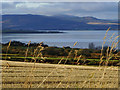 NH7565 : Stubble field near Allerton, Black Isle by sylvia duckworth
