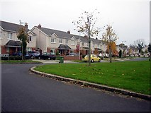 O0439 : Ravenwood Green, Clonsilla by Harold Strong