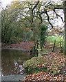 SO6386 : Ford and Footbridge crossing Cleobury Brook, Shropshire by Roger  Kidd