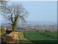 SO6787 : Shropshire Farmland near Middleton Scriven by Roger  Kidd