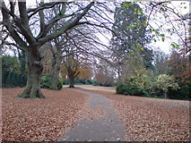 TQ7668 : Park off Maxwell Road, Brompton by Danny P Robinson